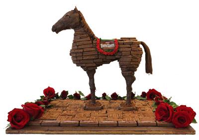 tim tam horse